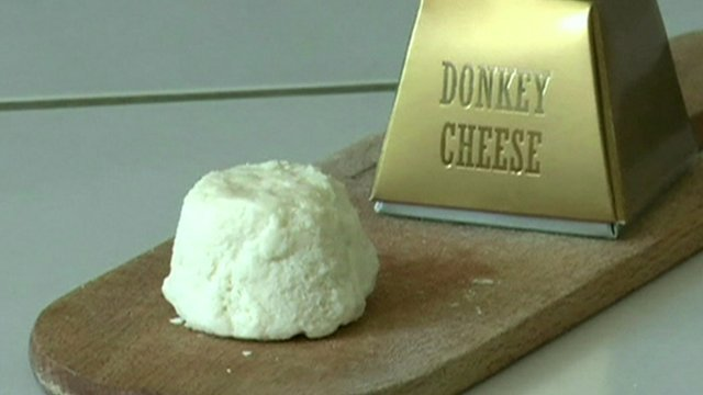 World   s Most Expensive Cheese Costs $1,000 a Pound, Is Made from Donkey Milk