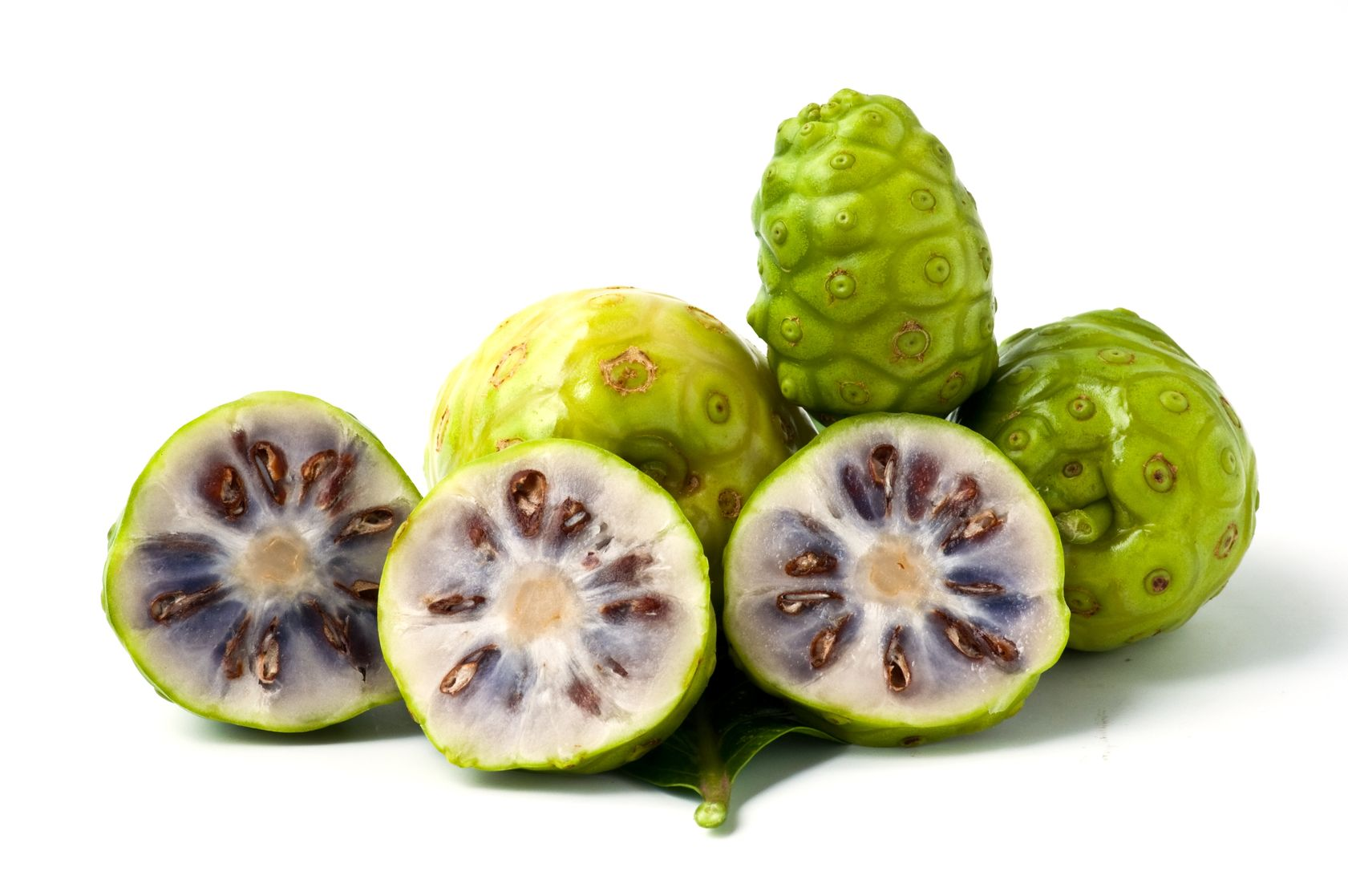 7 benefits about Noni plant ¡Incredible!