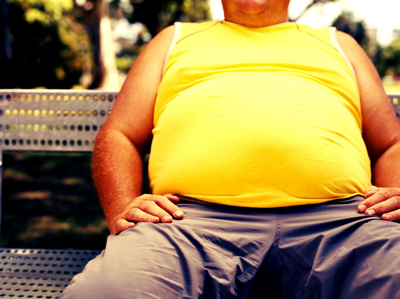The most popular theory about what causes obesity may be very wrong