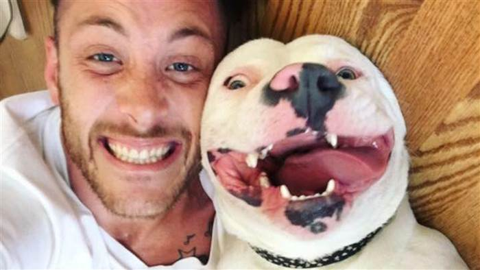 'Smiling' dog allowed back home despite town's pit bull ban