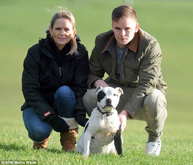 Missing For 2 Years, This Family Has Back The Dog They Always Knew They   d See Again