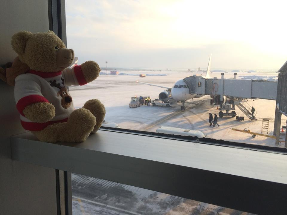 Look what this airport did with a teddy bear forgotten by a girl