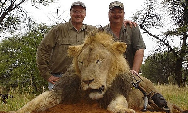 Killer of Cecil the lion was dentist from Minnesota, claim Zimbabwe officials
