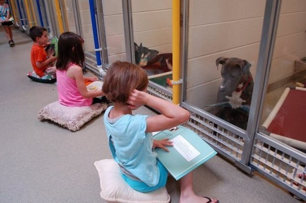 Something Truly Beautiful Is Happening At This Animal Shelter