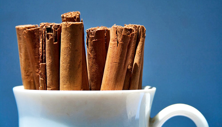 Can cinnamon compoud prevent Cancer?
