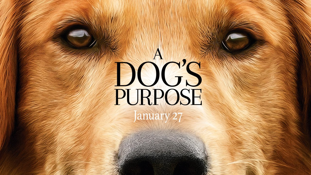 the most expected and emotional trailer: A Dog's Purpose (VIDEO)