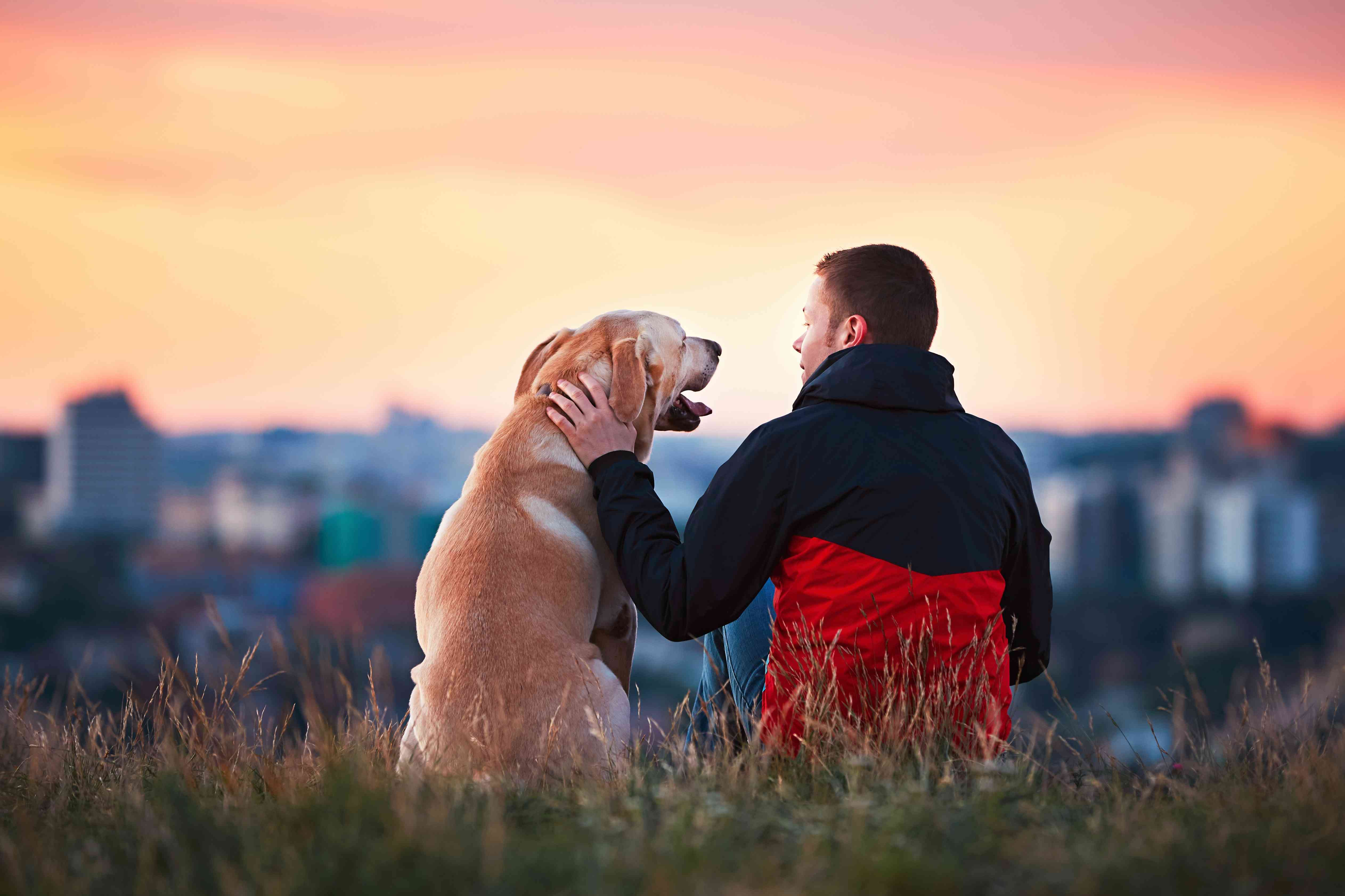 Do you know the incredible benefits of having a dog for your physical and emotional health?