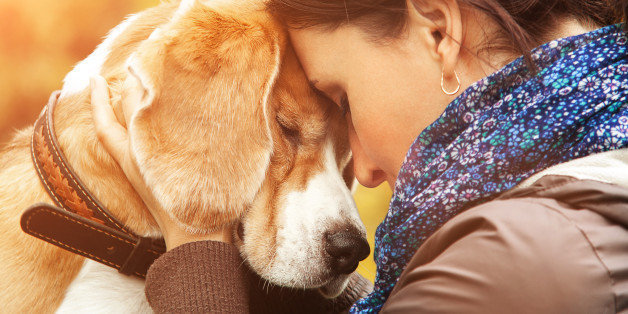How being a pet parent can help you beat depression