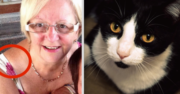 Her cat discovers that something is wrong with her health and try to warn hers
