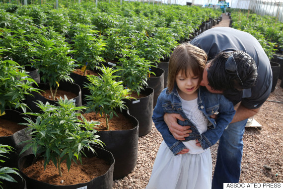 Groundbreaking Research Suggests Medical Marijuana Could Reduce Seizures In Children