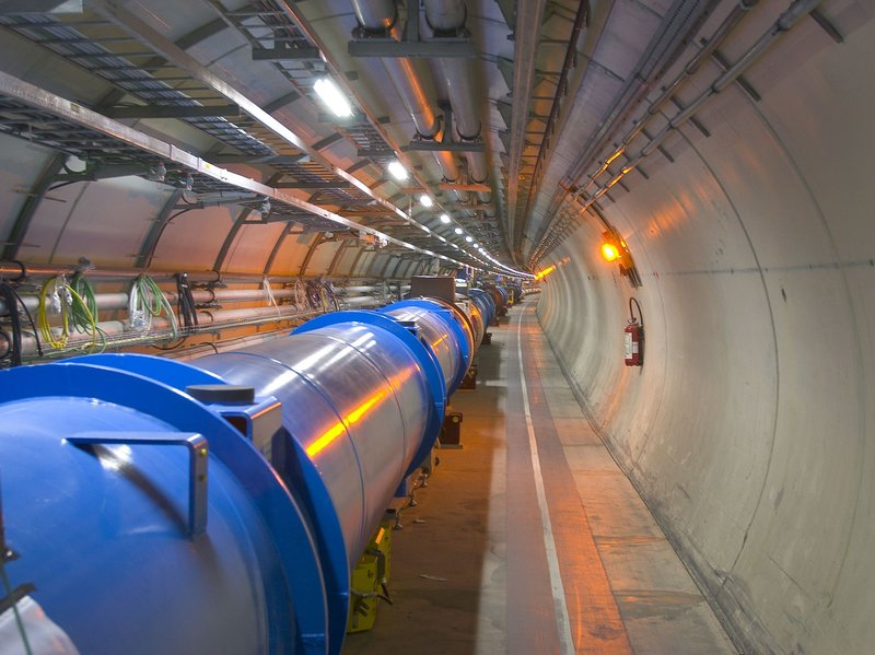 Weasel Apparently Shuts Down World's Most Powerful Particle Collider